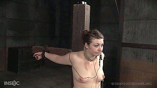 White regular chubby chick crusified nude and pierced