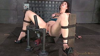 While being fucked with sex machine kinky brunette gives BJs to masters